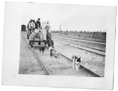 Railway car being pulled by sled dogs